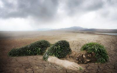Revue d'actu – Crise climatique : des ressources pour penser et agir